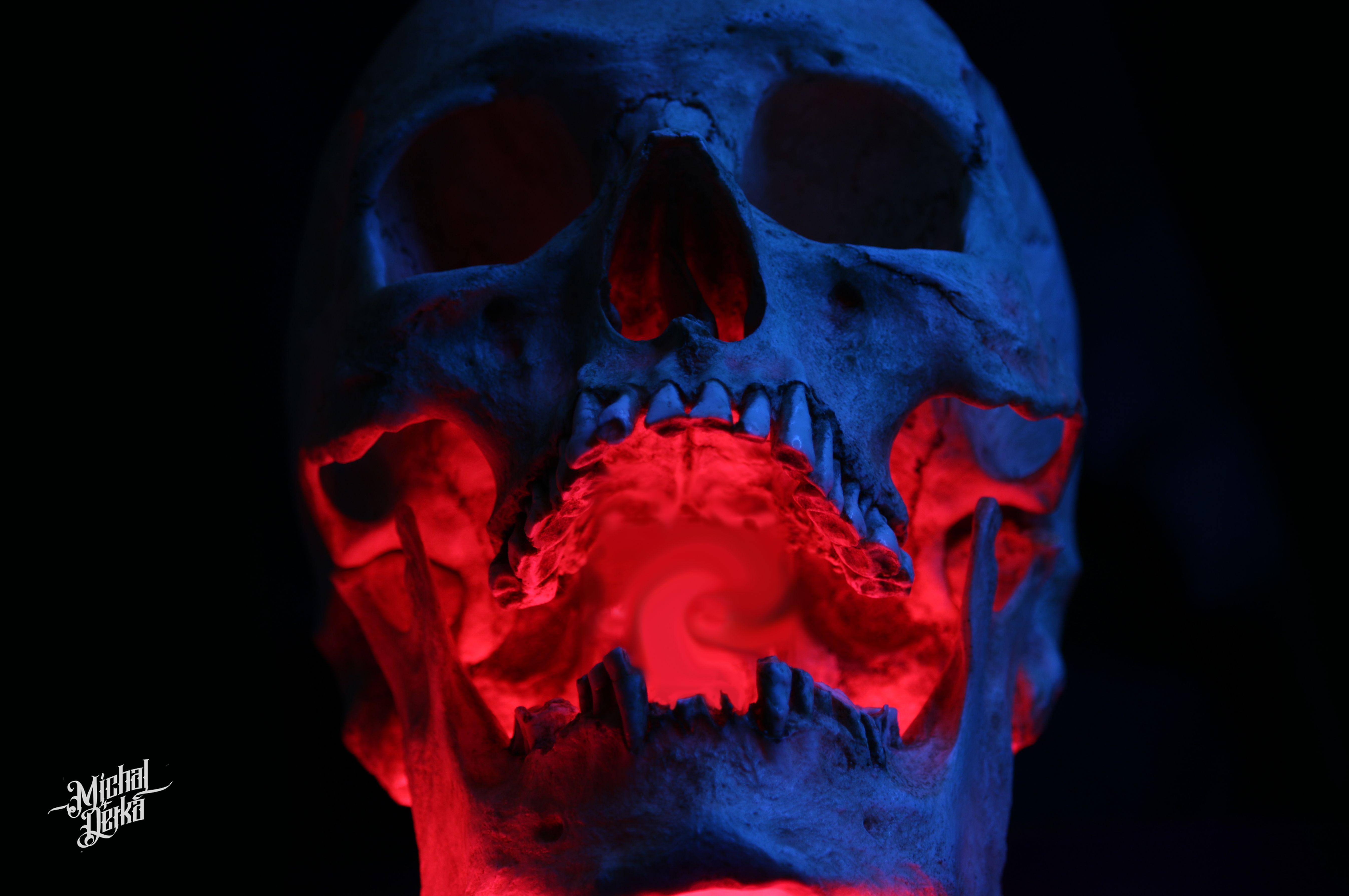 Skull Tattoo Reference Photo Art Colour Skull Art Photo Art