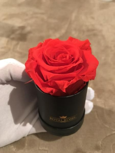 Mini Round Eternity Rose Box Last More Than 1 Year Preserved Roses Flower Delivery Beauty Forever
