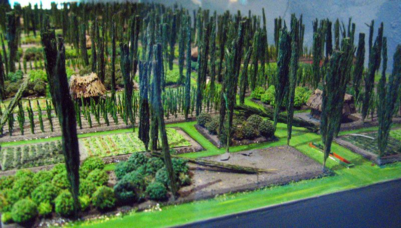 Chinampas Aztec Floating Gardens At Xochimilco National Museum Of Anthropology Mexico