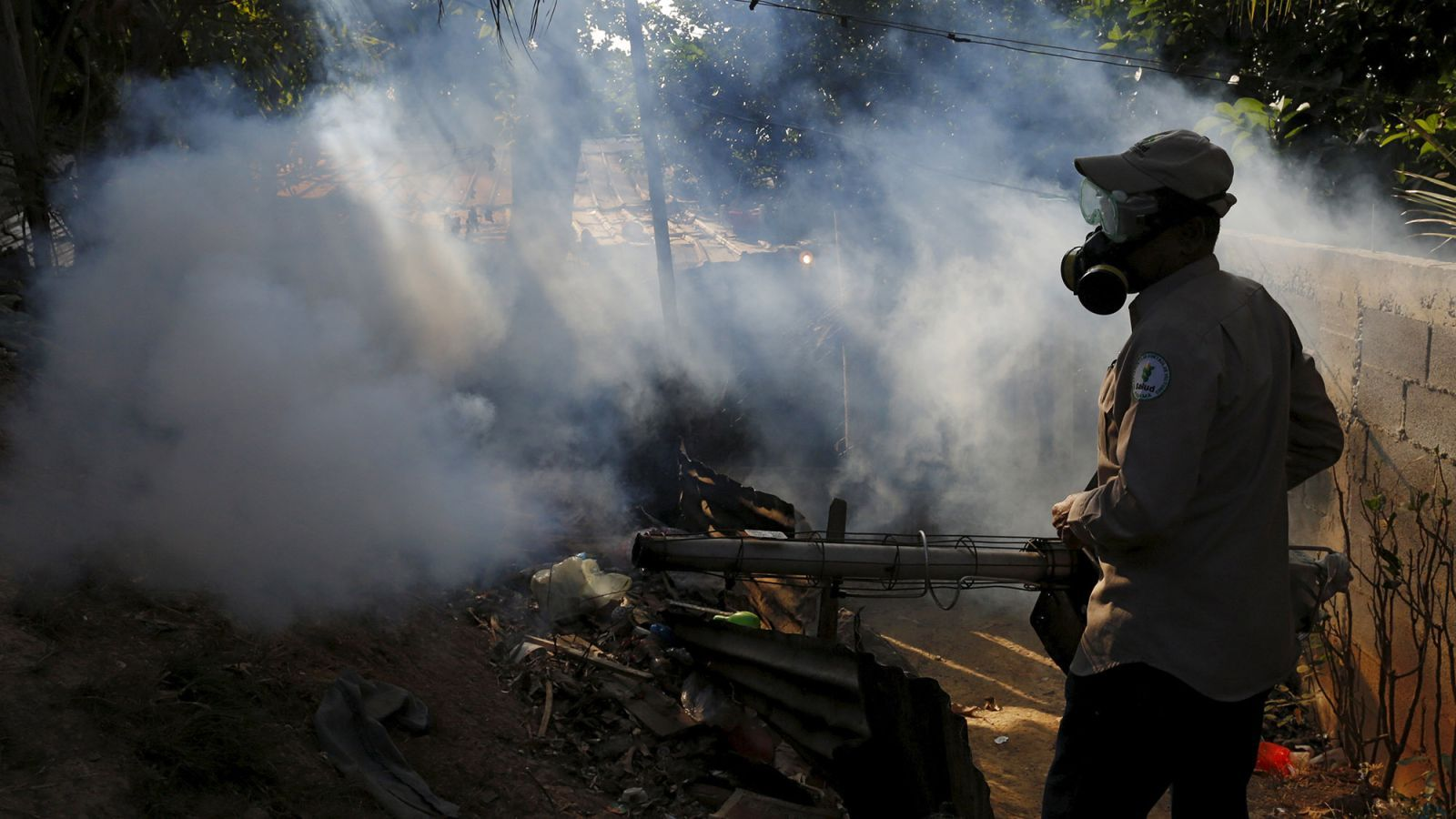 Scientists in epidemic's hot zone explain why Zika's link