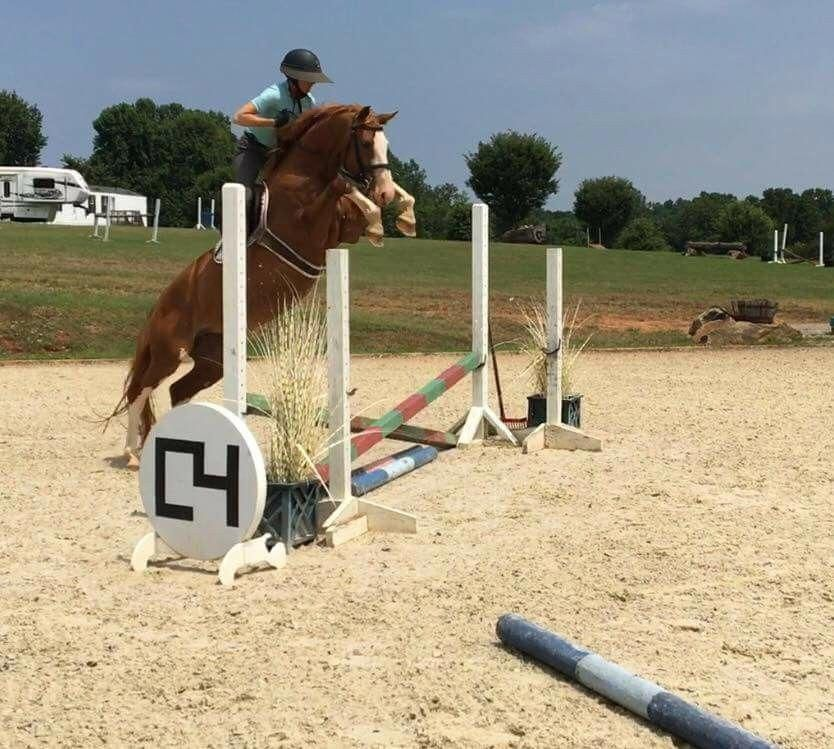 Overachiever #horseridingstyle,equestrianfashion,equestrianlifestyle,equestrianc...