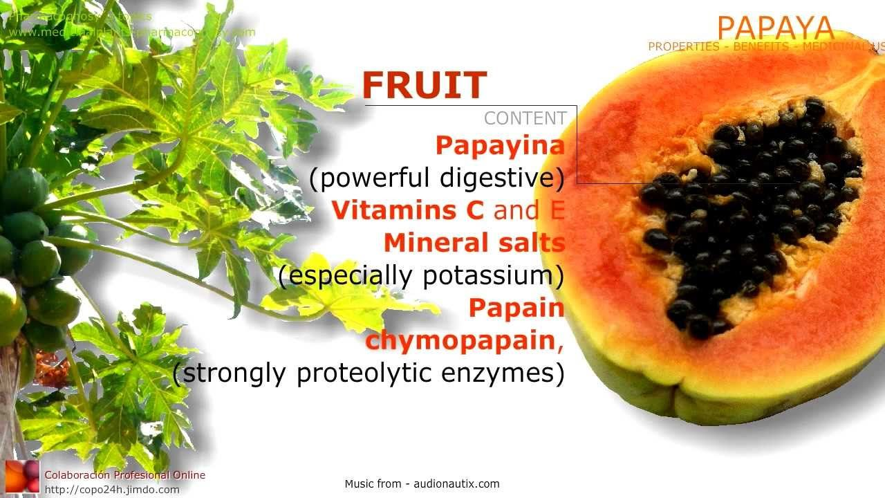 papaya benefits. properties and medicinal uses of papaya