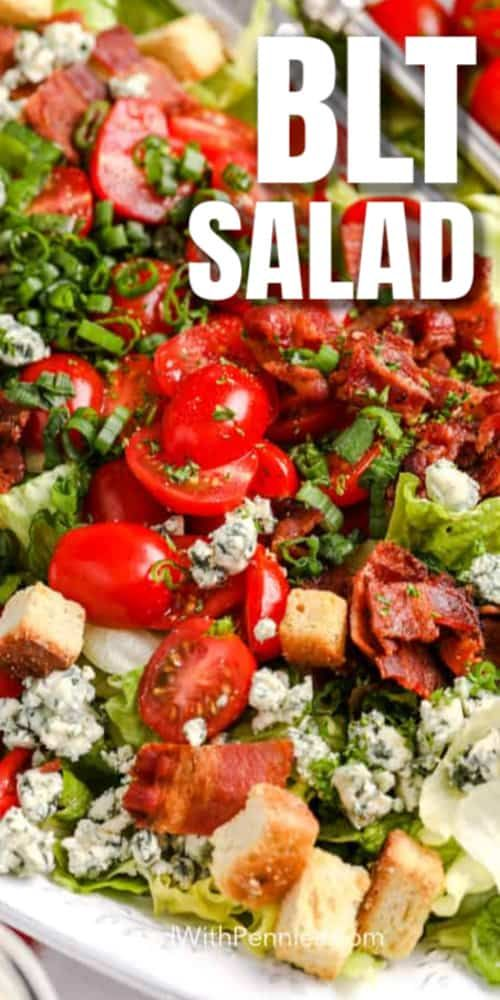 BLT Salad {with a Creamy Dressing} - Spend With Pennies