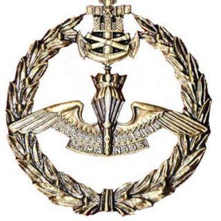 30bace907ed Insignia Comando Infantería de Marina - Chile | Military + armed ...