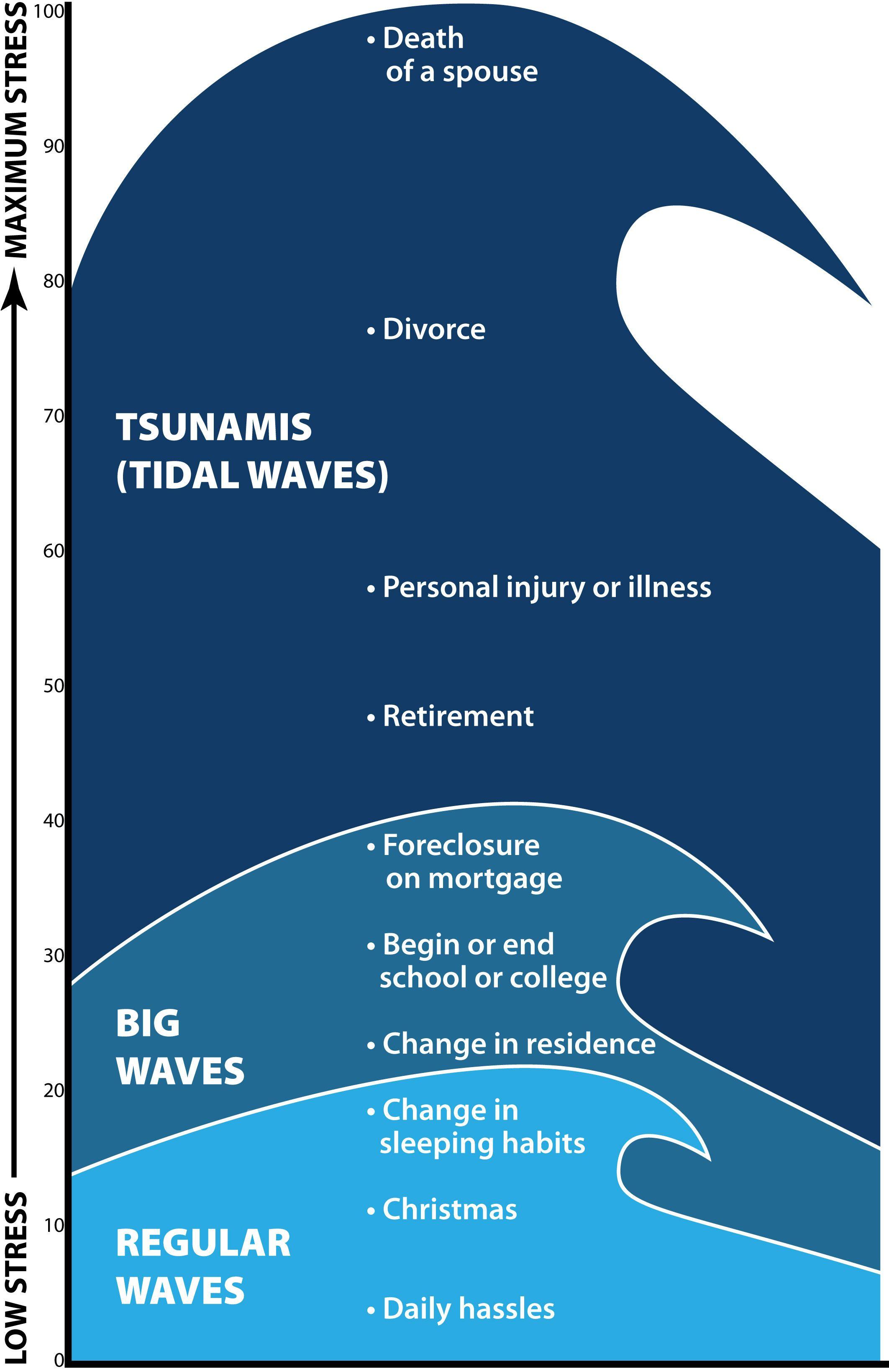 Capacitor Farad Tsunami Wire Diagram