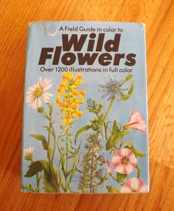 Field Guide To Wild Flowers Book Vintage How To By Forsythiahill Field Guide Wild Flowers Flower Illustration