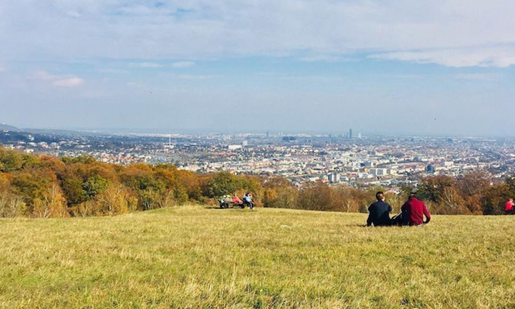 Wo Man Im Herbst In Wien Unbedingt Spazieren Gehen Sollte Teil 2 Wien Spazieren Gehen Spazieren