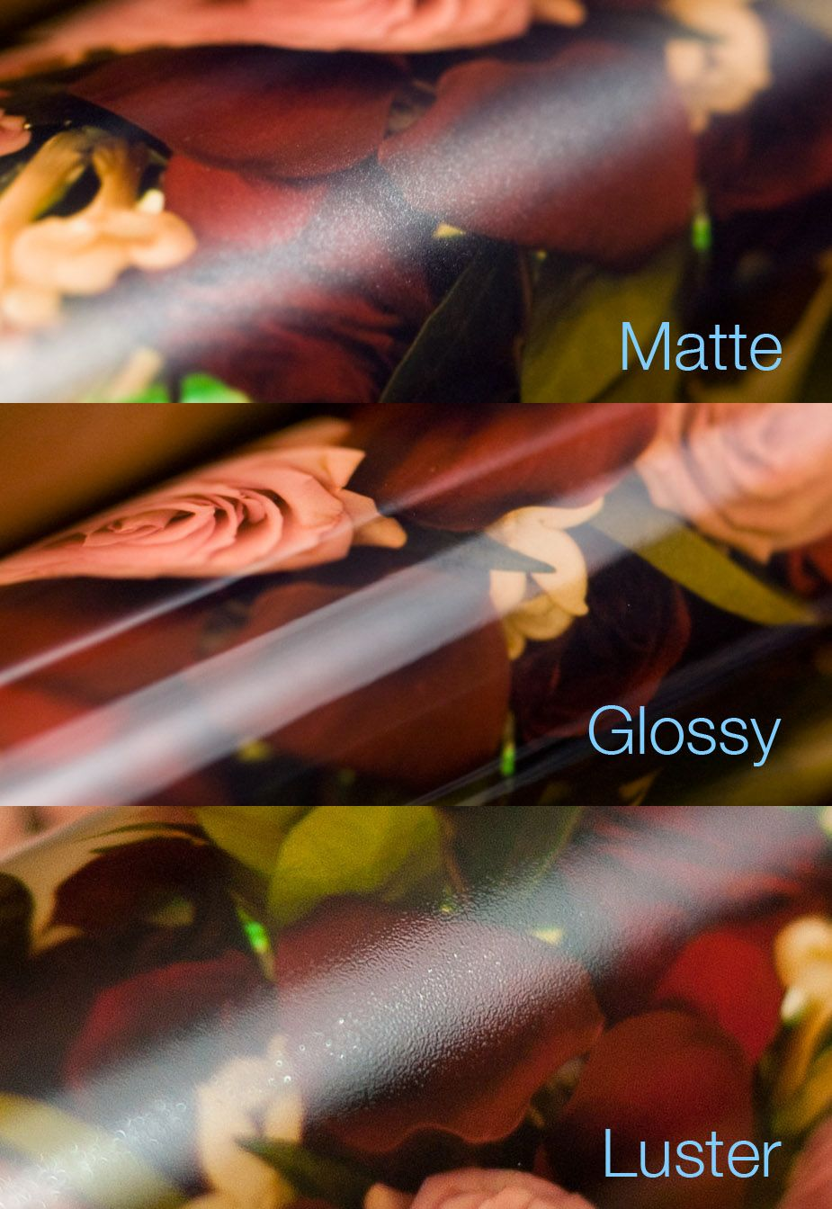 What Is The Difference Between Matte Glossy And Er