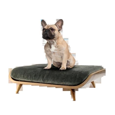 Pixie Modern Cat Dog Bed From Cairu Design