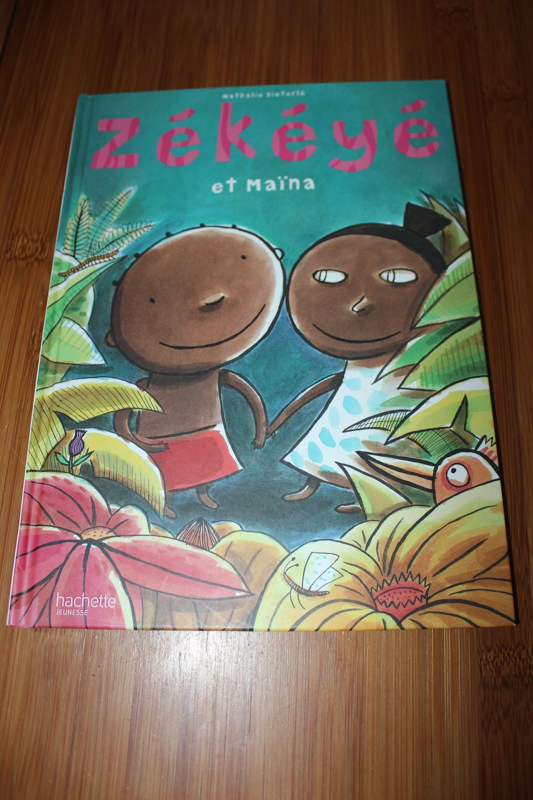 [Avis livre] Zékéyé et Maina de Nathalie Diéterlé {Chut