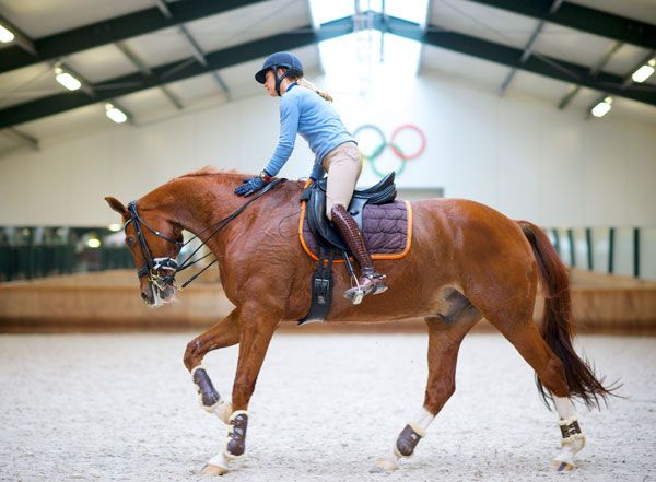 Dressage Fitness, it's more than you think, Adelinde Cornelissen and Parzival, her Olymic mount by Jazz, out of Fidora by Ulft