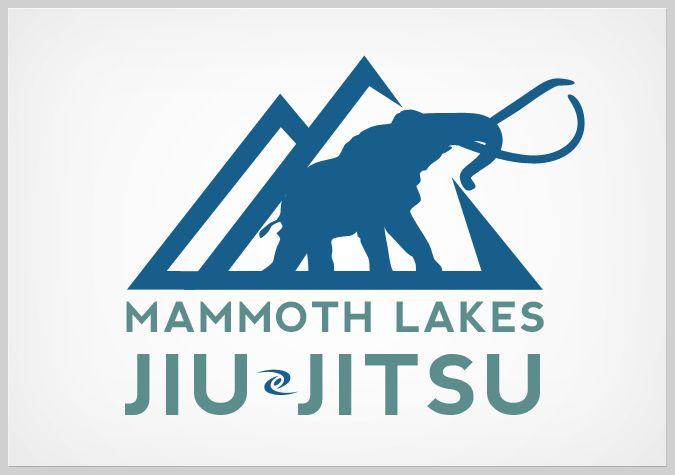 Jiu-Jitsu-Logo-007.jpg (675×475)