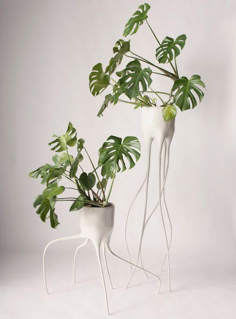 tim van de weerd 39 s monstera plant pots balance on spindly legs. Black Bedroom Furniture Sets. Home Design Ideas