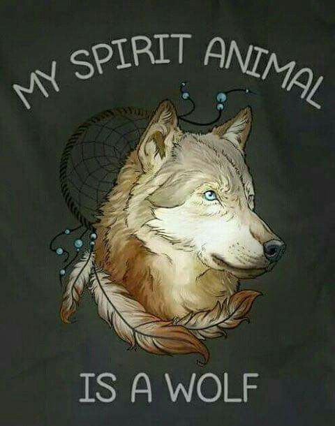 Yes, yes it is!   Moi   Wolf spirit, Wolf spirit animal, Wolf pictures