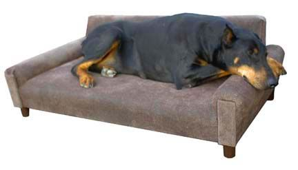 MaxComfort Memory Foam Modern Dog Sofa | Pistonion Era | Dog couch ...