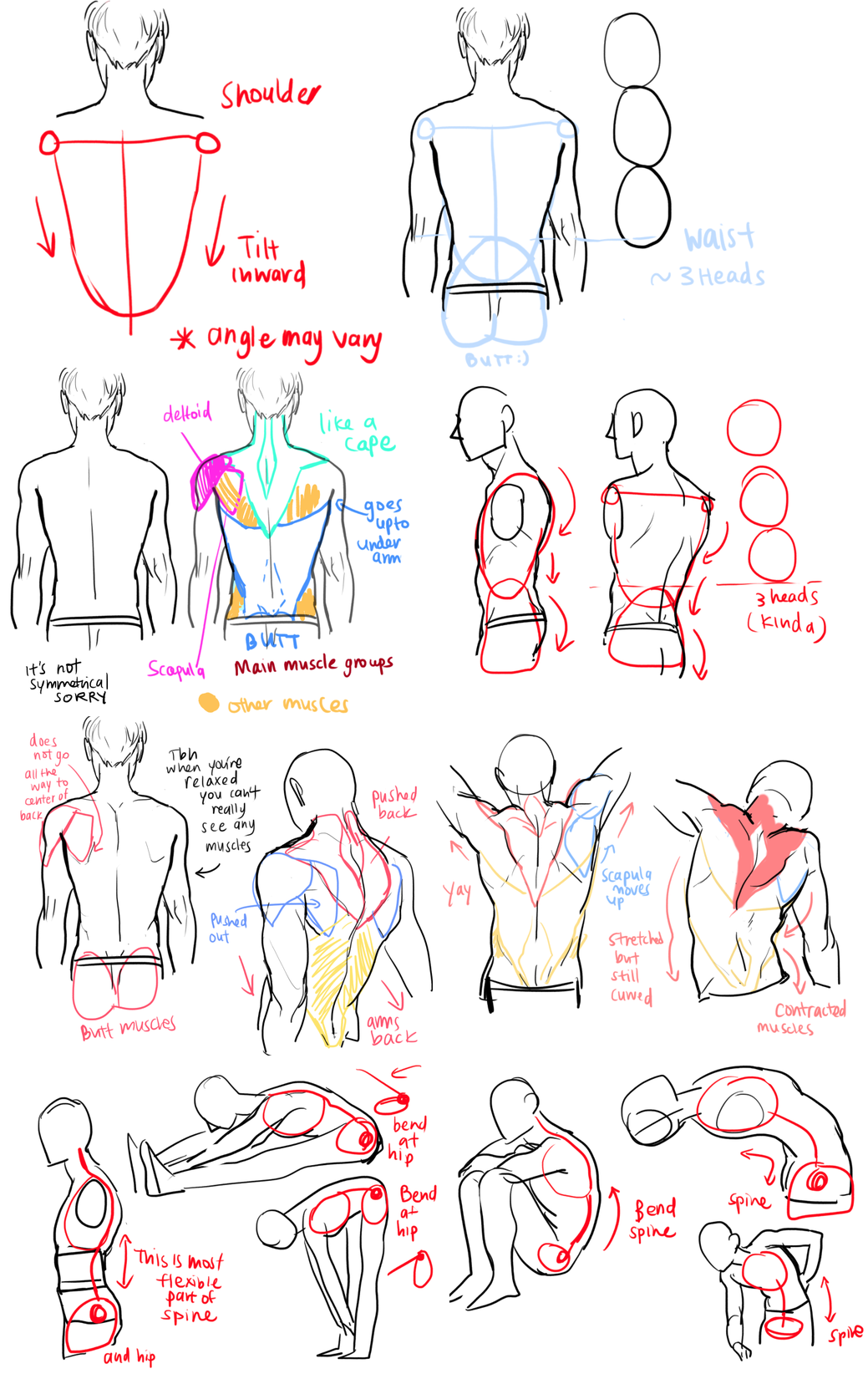Back Tutorial Drawing viria.tumblr.com | my drawing stuff ...