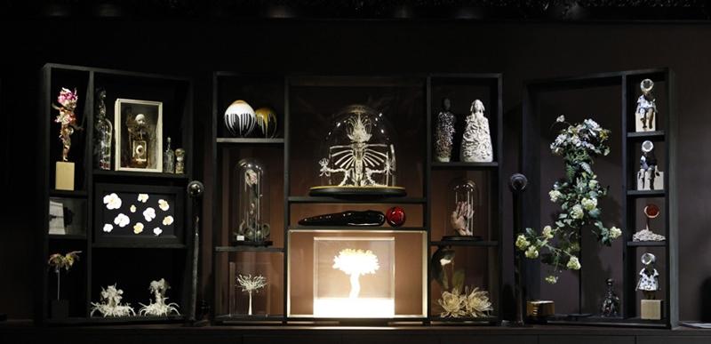 Cabinet De Curiosite Contemporain Recherche Google Cabinet Of Curiosities Liquor Cabinet Decor