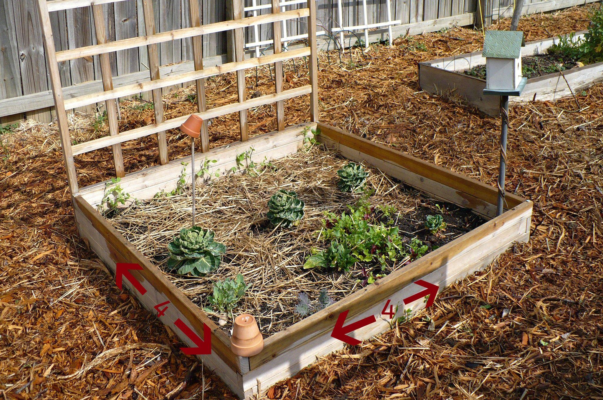 raised bed plans - Google Search   garden   Pinterest   Raised bed ...