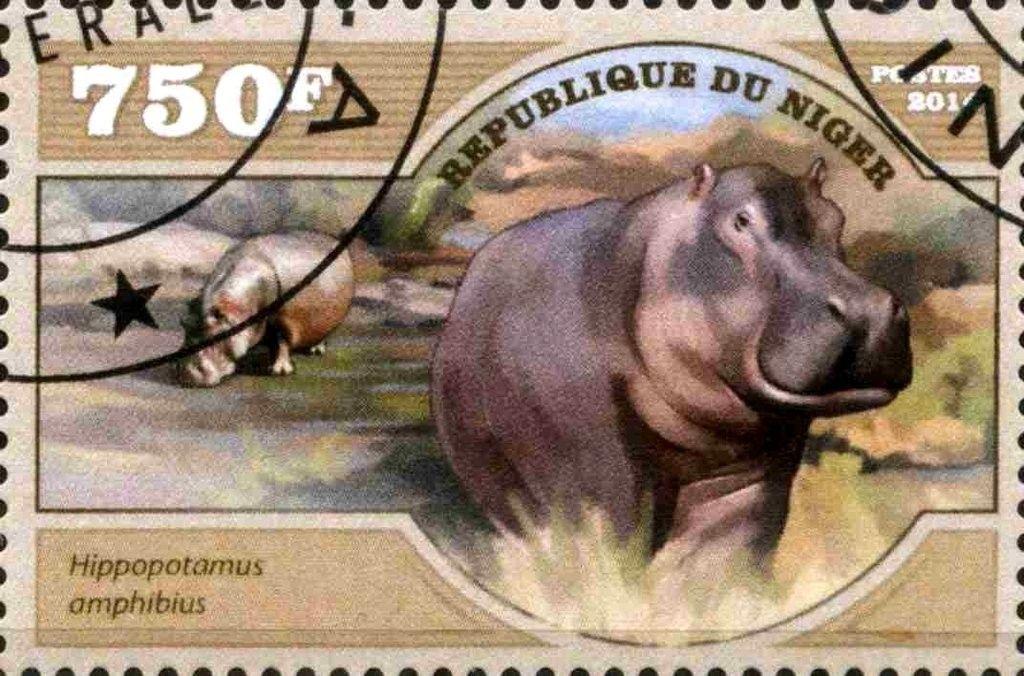 Pin de Doren Rogers en naturaleza animal estampillas