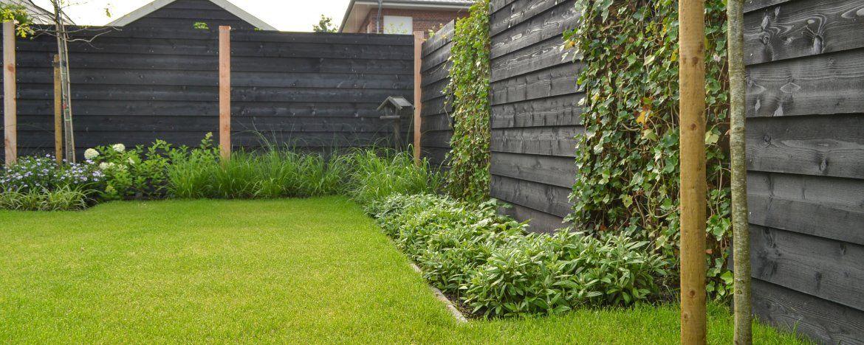 afbeeldingsresultaat voor klimop schutting | garden - outdoor