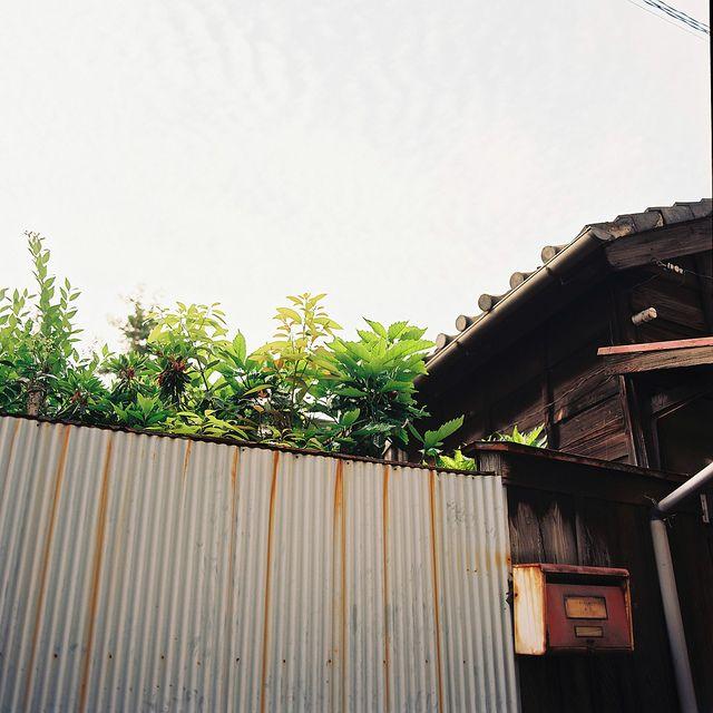 谷中 Yanaka Tokyo by ogino.taro, via Flickr
