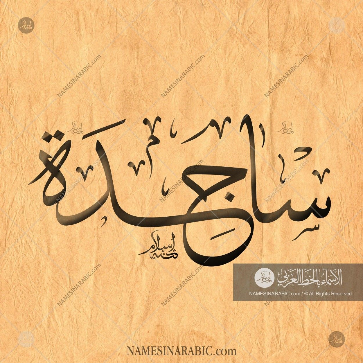 Sajidah ساجدة Names In Arabic Calligraphy Name 1679 Calligraphy Name Calligraphy Names