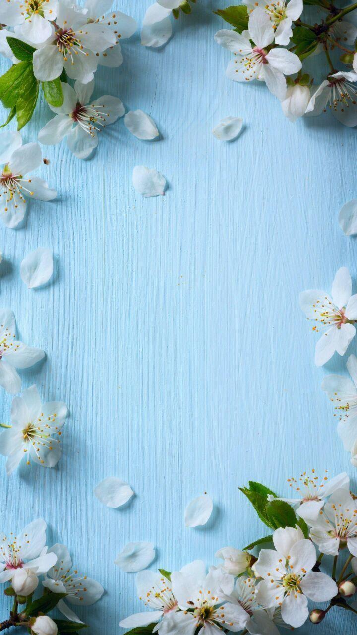 Pictures Spring Wallpaper Flower Phone Wallpaper Flower Background Wallpaper