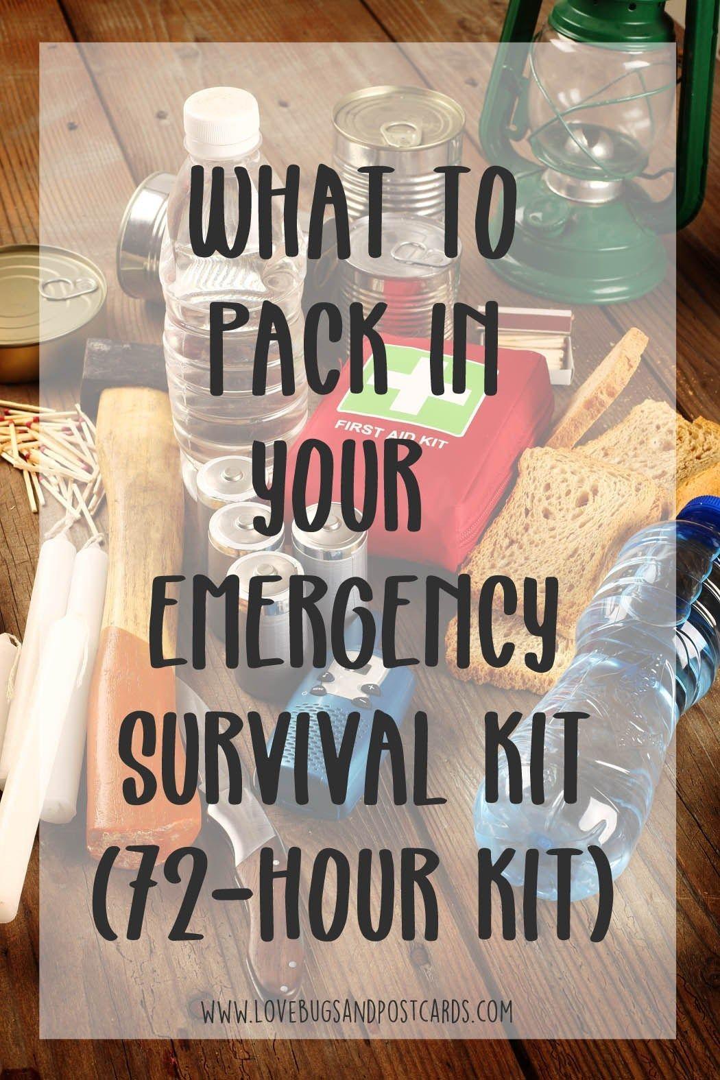 Emergency kit checklist printable 72hour kit lovebugs