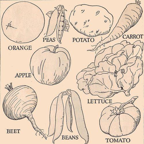 Vegetable Line Drawings My Style Pinterest Vegetable Drawing