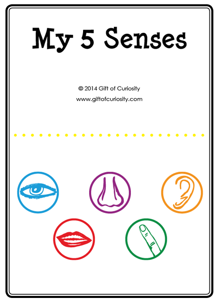 five senses activities a printable my 5 senses activity book plus a link to a - Free Preschool Printable Books