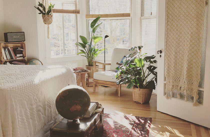 planten in de slaapkamer bevorderen je nachtrust planten in de slaapkamer bevorderen je nachtrust planten by bolinde