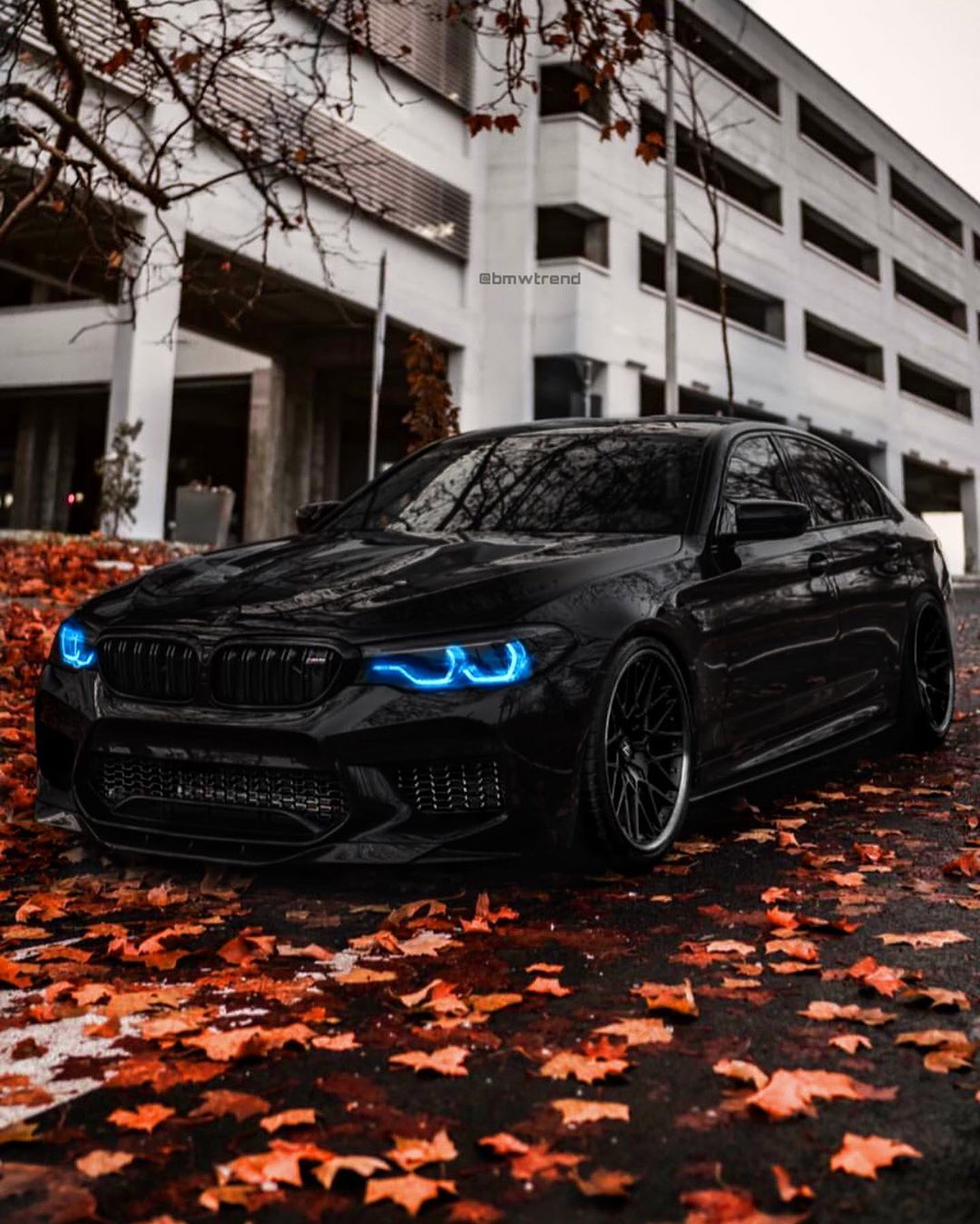 Click On The Picture For More Bmw M5 F90 Follow Bmwtrend Bmwtrend Bmwtrend Bmwtrend Beamer Bimmer Bmw Bmwm5 M5 Bmwm3 Bmw M5 Bmw Bmw M3