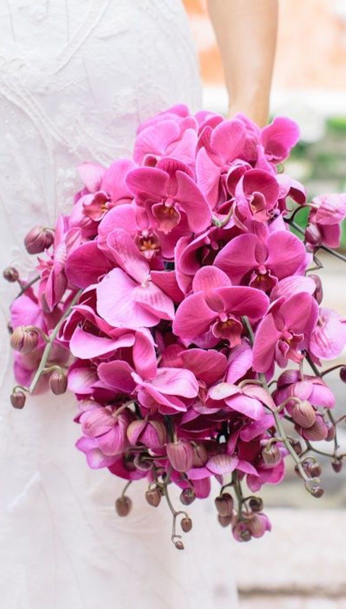 Pin by viivi on bride pinterest orchid bouquet and weddings