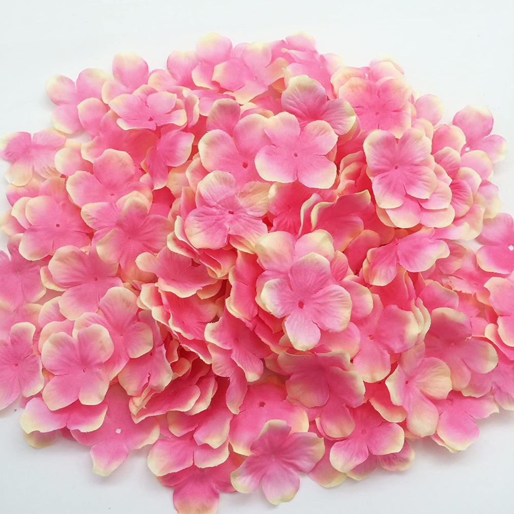 What Types Of Flowers Have Four Petals Google Search Types Of Flowers Petals Flowers