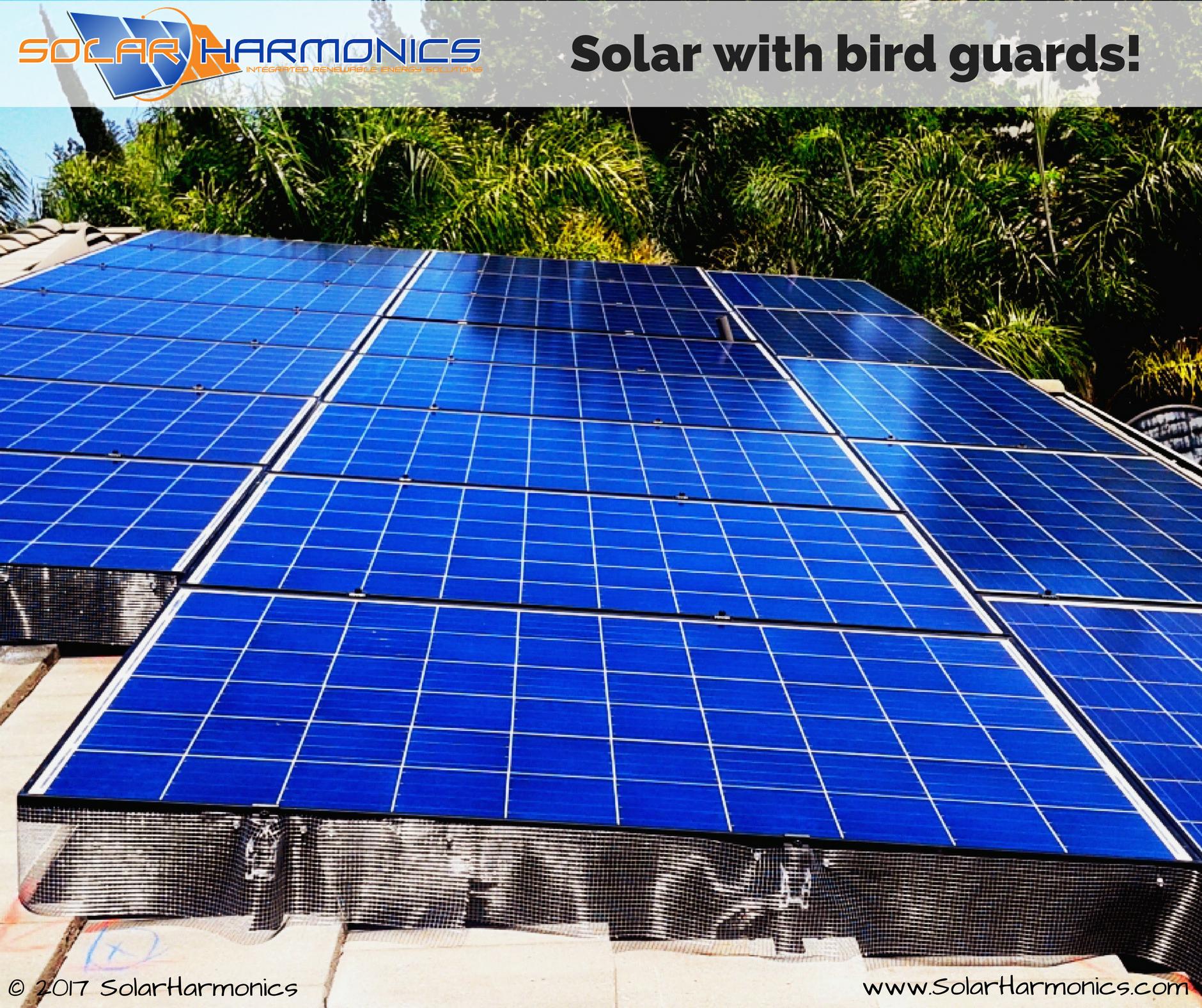 Solar With Bird Guards Antioch Panel Installation Solar Installation Solar Roof Solar Panel