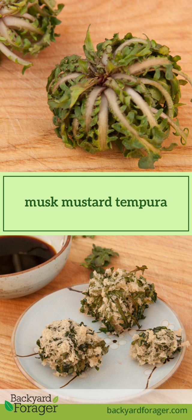musk mustard tempura