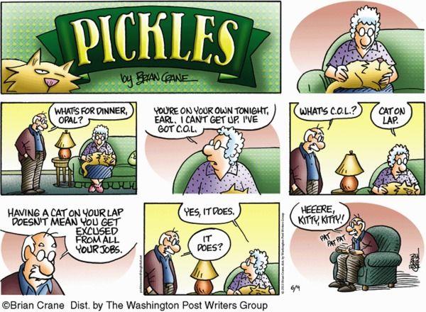 Pickles Cartoon for Jun/09/2013 Cat on lap stops ...