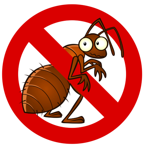 Do you have termites and live in Riverside CA? Call us