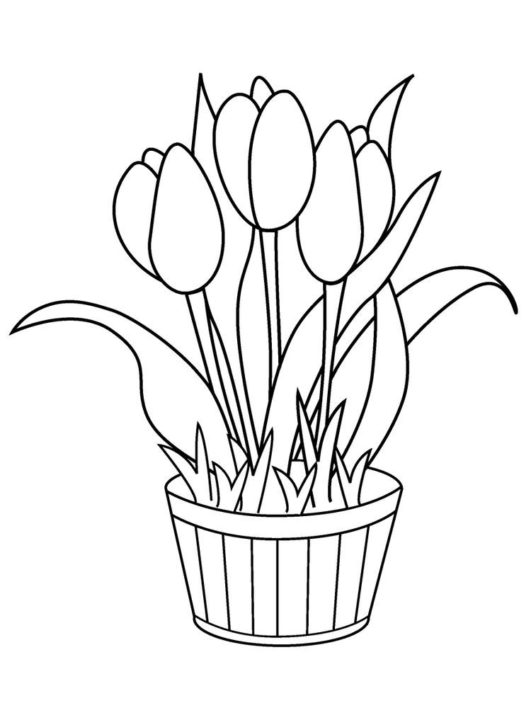 Tulip Coloring Printable Pages Pdf When You Hear The Tulips Surely The First Th Flower Coloring Pages Printable Flower Coloring Pages Birthday Coloring Pages