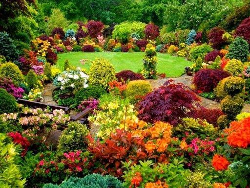 Beautifully colored garden exterior design landscaping beautifully colored garden beautiful flowers mightylinksfo
