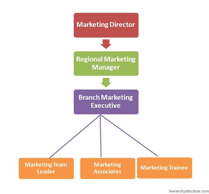 Marketing Jobs Hierarchy | Marketing, Advertising and PR ...