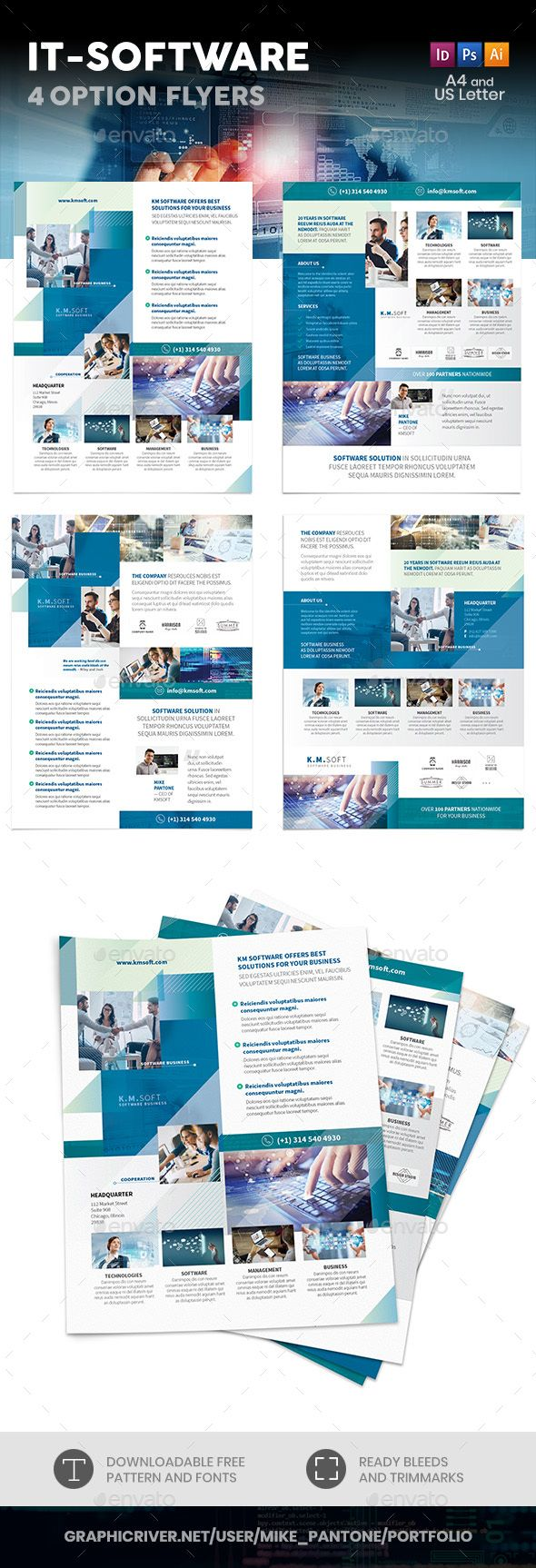 It Software Company Flyers 4 Options Company Brochure Design Brochure Design Layout Flyer