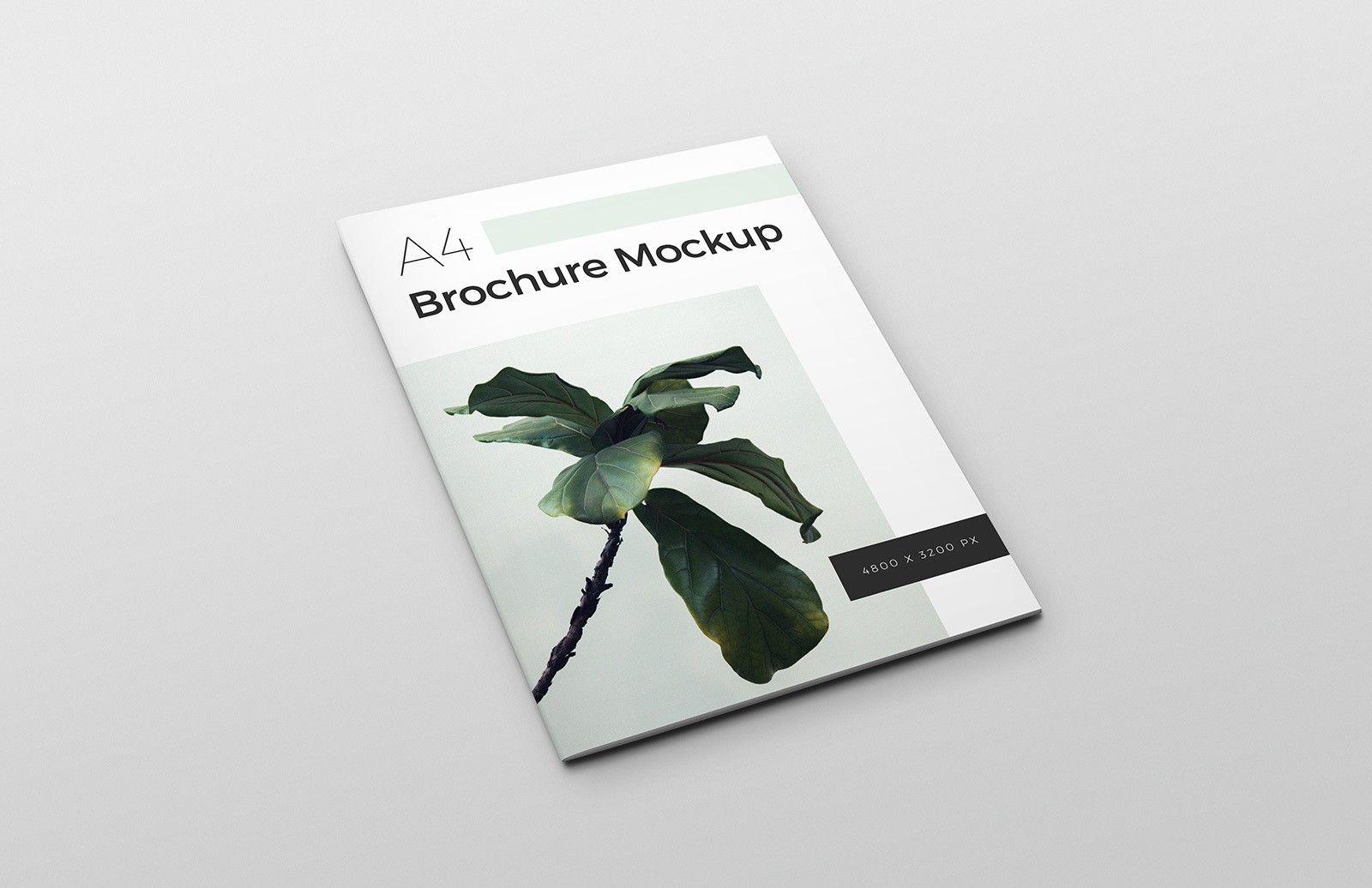 Free A4 Brochure Mockup for (con immagini)