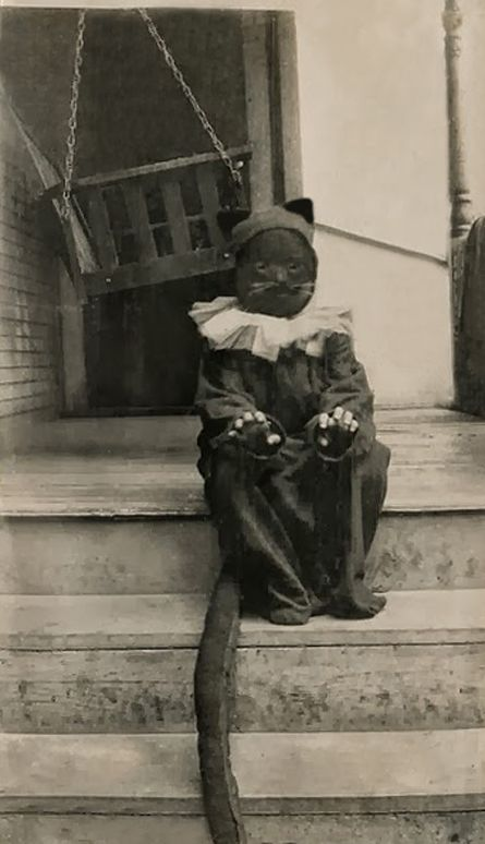 Vintage Photograph~+~+ Little Kitty Kat for Halloween 1924 ...