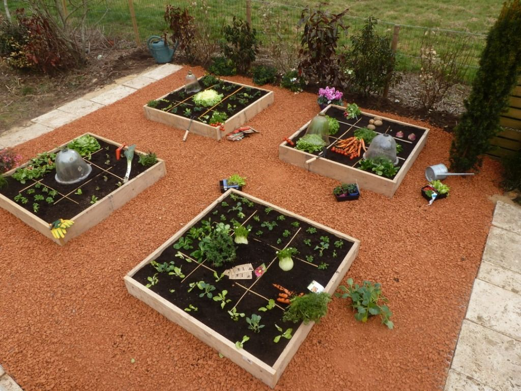 Des carrées potager cultivés. | carré potager | Pinterest | Gardens
