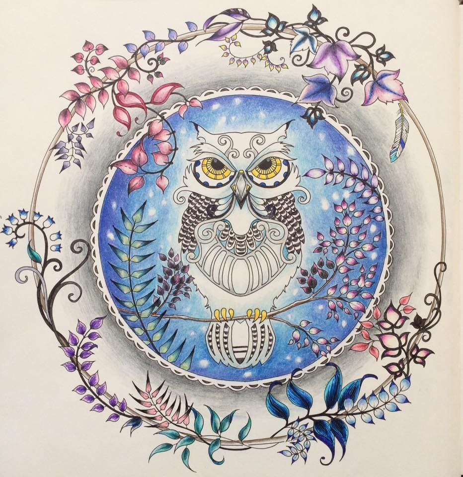 Johanna Basford Owl Enchanted Forest Coloring Enchanted Forest Coloring Book Enchanted Forest Coloring Forest Coloring Book