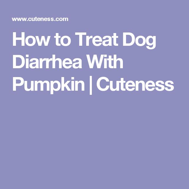 How To Treat Dog Diarrhea With Pumpkin