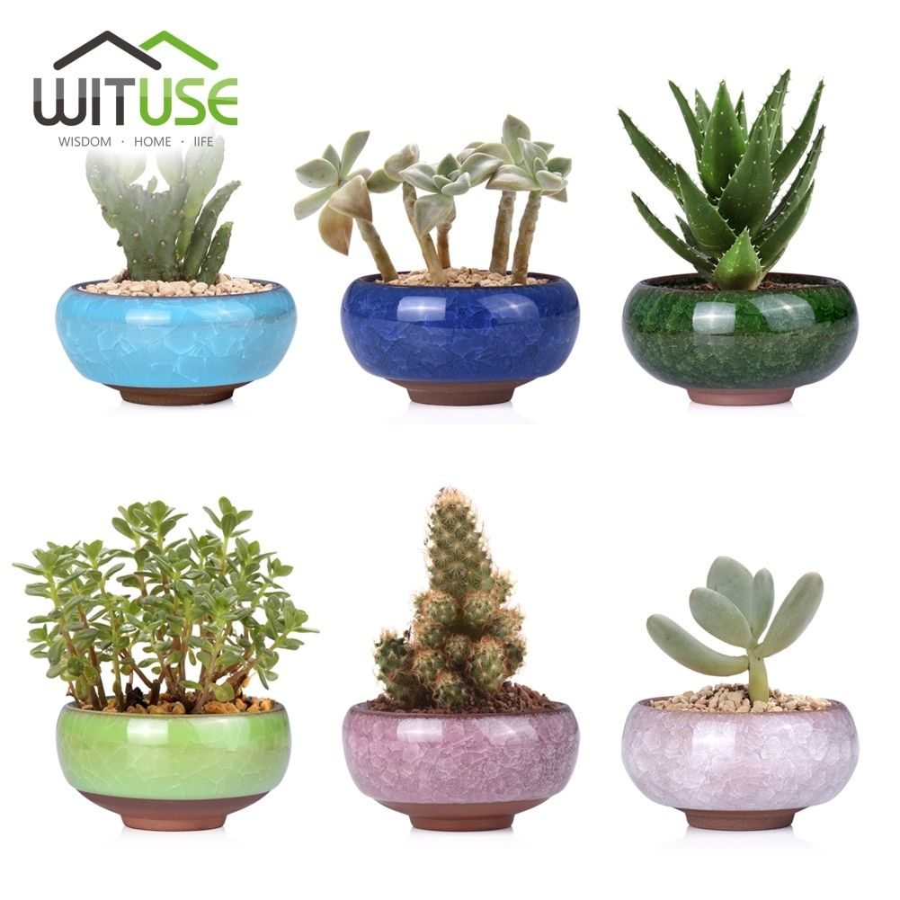 Pin On Garden Pots And Planters