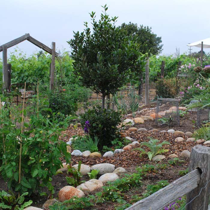 French Kitchen Garden Potager Southern California Gardening