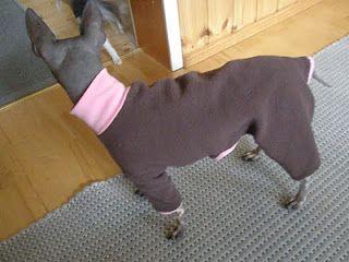 Koiran Haalari Kaavat Ohje Dog Clothes Dogs Sweatpants